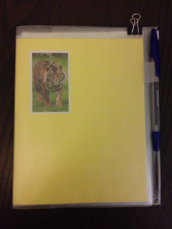 Мой «школьный» дневник